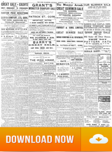 Cork Examiner 22. July .1916