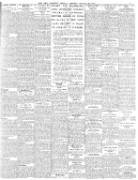 Irish Examiner 20.January.1920 Download