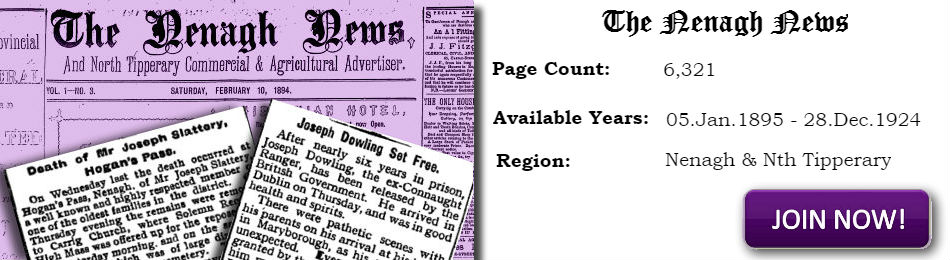 Nenagh News Archive for North Tipperary and Nenagh